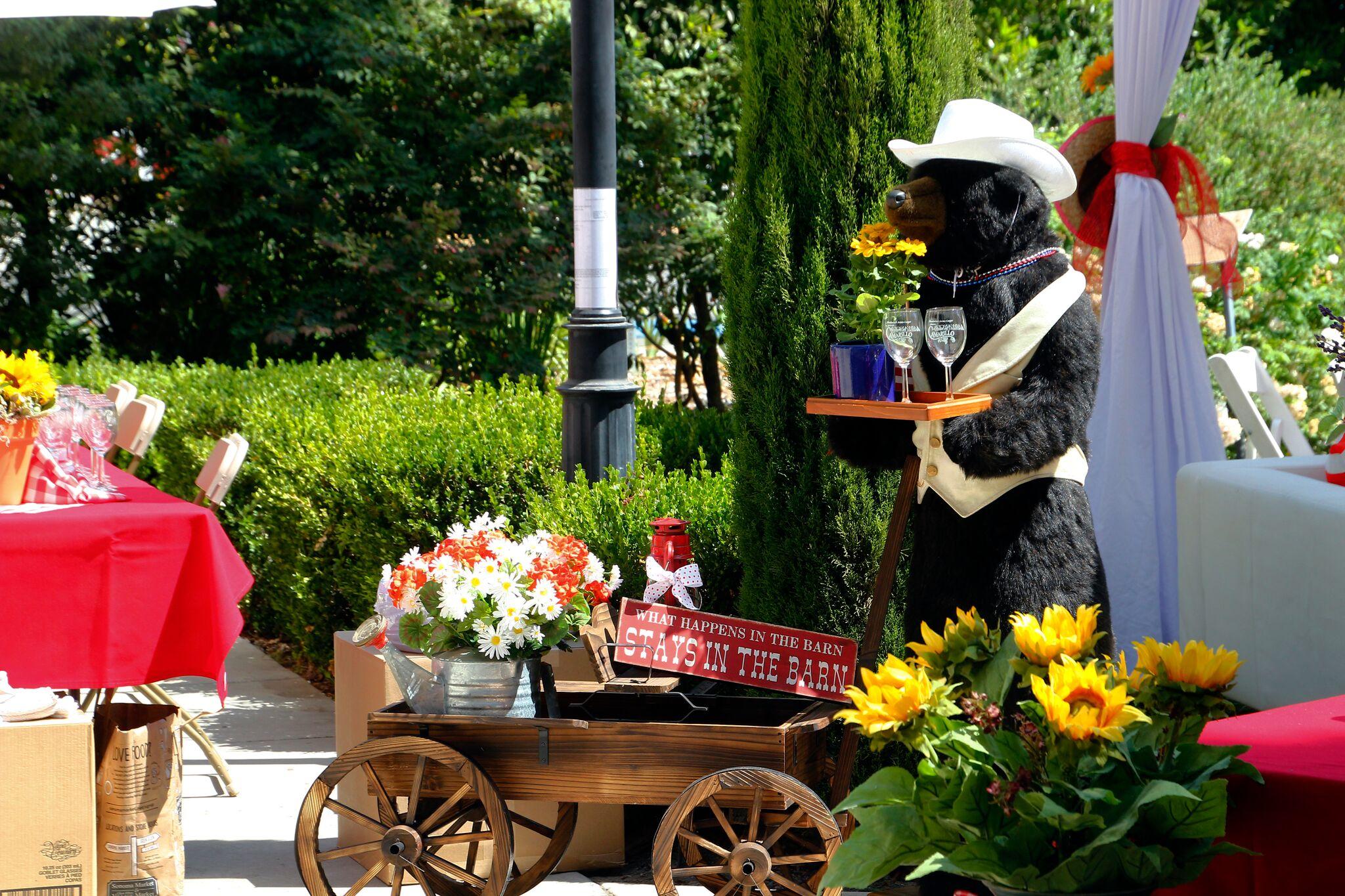 Bear & Wagon at VIP_MG_3755_preview