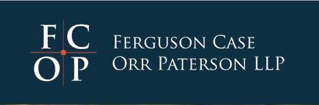 ferguson-case-4